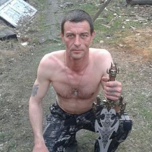 Тарас, 43 года, Вяземский